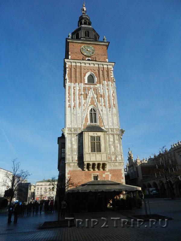 Башня ратуши, Рыночная площадь, Краков