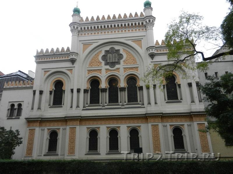 Испанская синагога, Йозефов, Прага