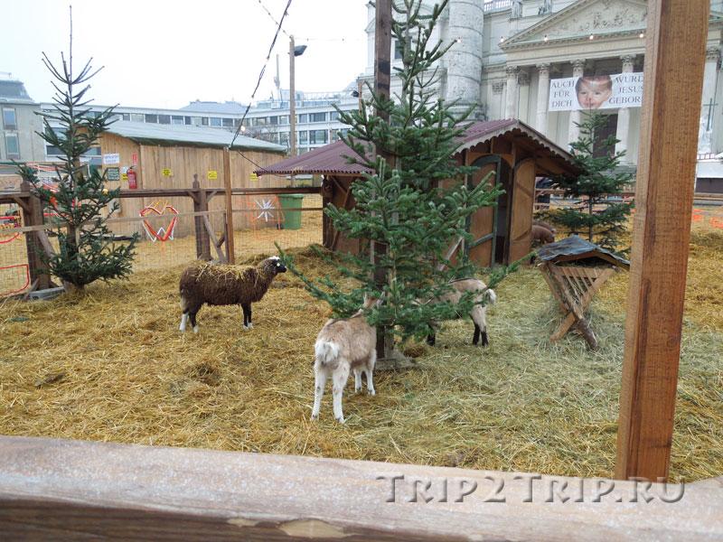 Рождественская ярмарка на Карлсплац, Вена