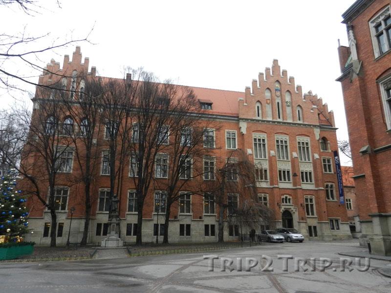 Ягеллонский Университет, Коллегиум Майус, Краков
