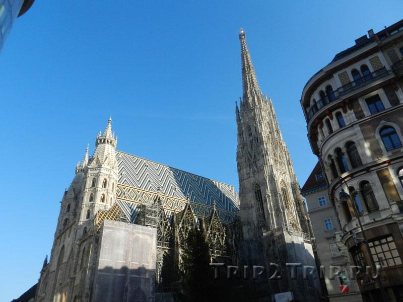 Собор святого Стефана (Штефансдом), Вена