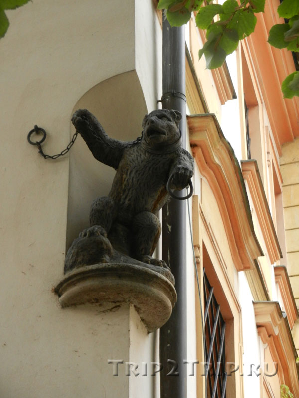 "Дом ""У чёрного медведя"", Унгельт (Тын), Прага"
