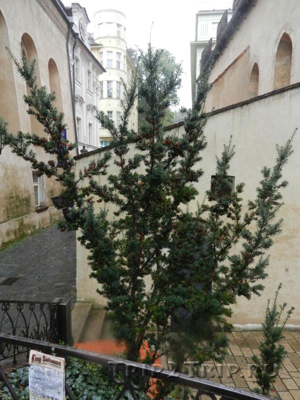 С левой стороны переулка - Высокая Синагога, Йозефов, Прага