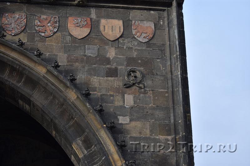 Изображение зимородка на Староместской мостовой башне, Прага