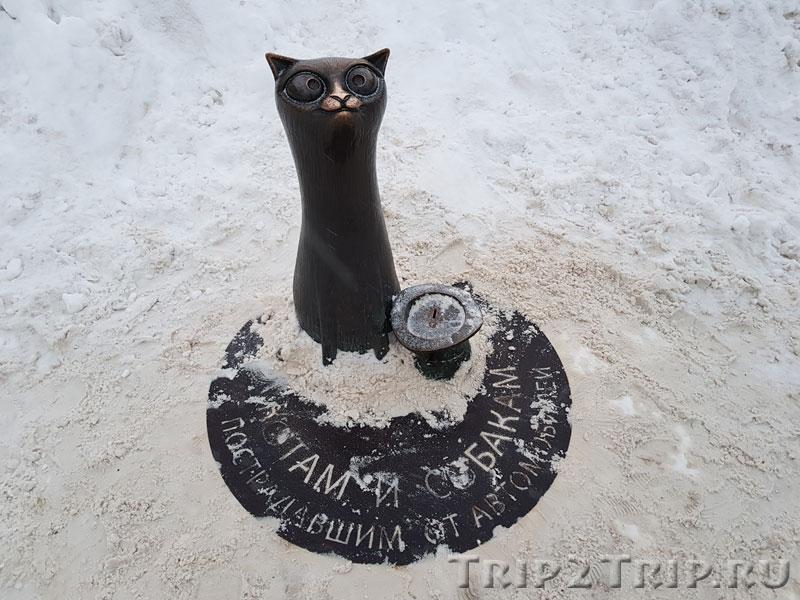 Скульптура Кот, Сусанинская площадь, Кострома