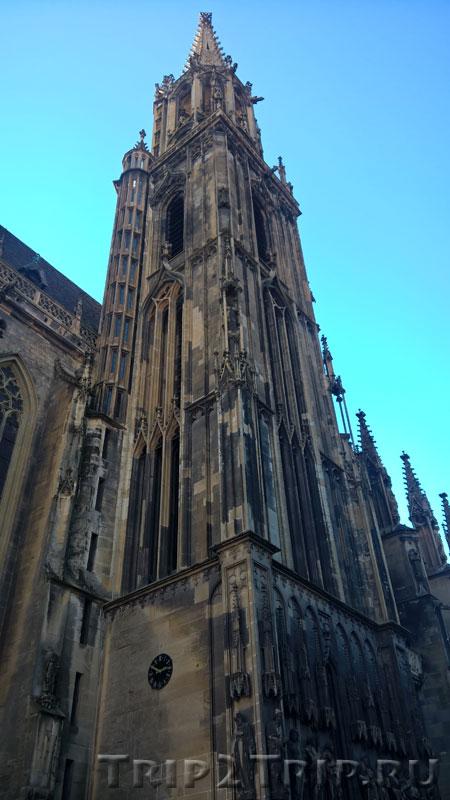Колокольня собора Сен-Тибо, Тан