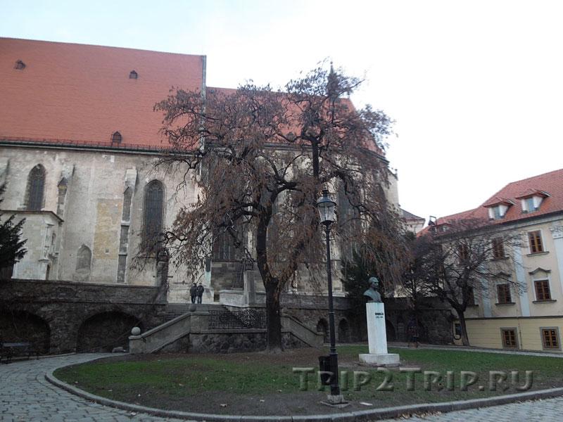 Апсида собора святого Мартина, Панская улица, Братислава