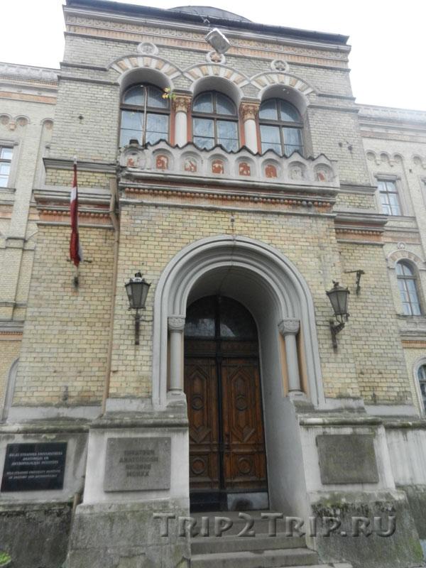 Анатомикум, Рига