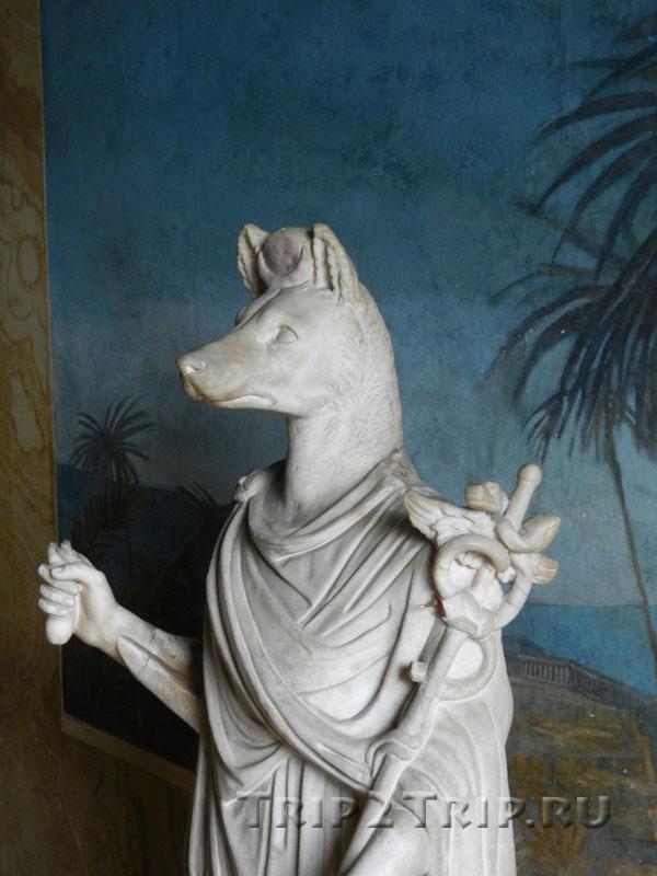Германубис, вид в профиль, Ватиканские музеи