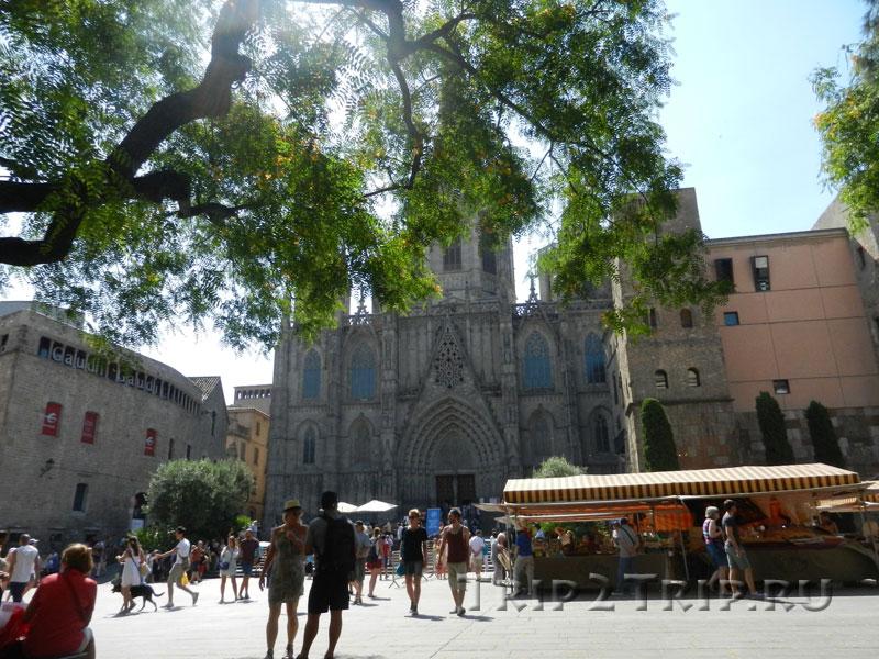 Placita de la Seu, Барселона