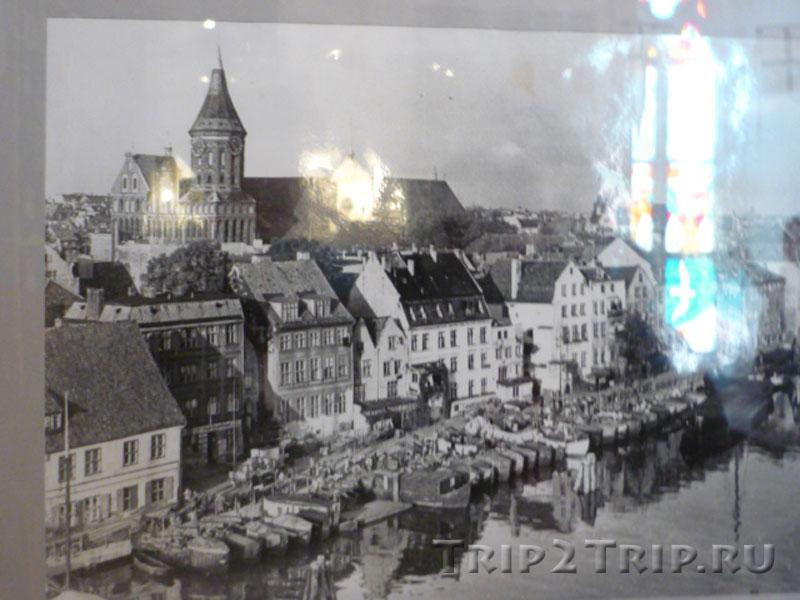 Кнайпхоф до войны, Кёнигсберг (фото из музея Кафедрального собора)
