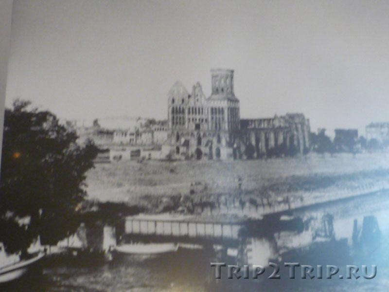 Кнайпхоф после войны, Калининград (фото из музея Кафедрального собора)