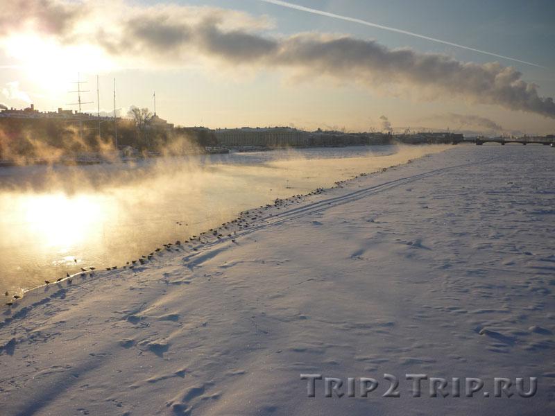 Нева в январе 2010 года, Санкт-Петербург