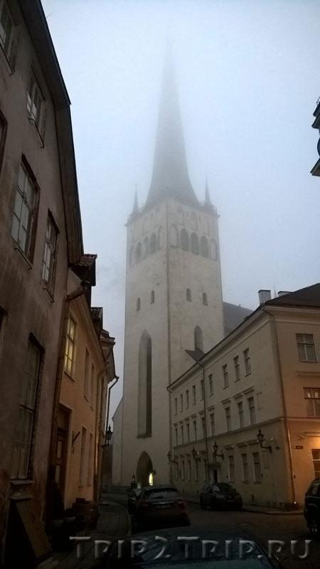 Олевисте (церковь Святого Олафа), Таллин