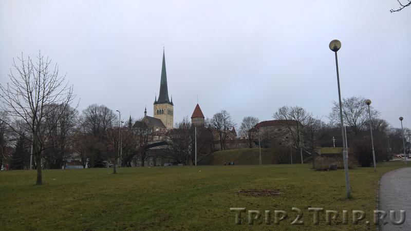 Панорама Старого Таллина от парома. Доминантой является Олевисте, перед ней - Толстая Маргарита