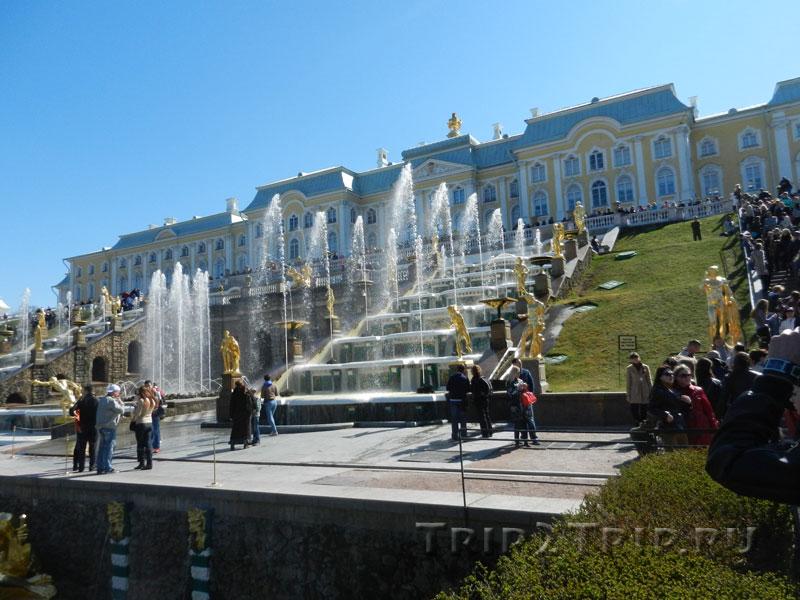 Большой каскад и Большой дворец, Петергоф