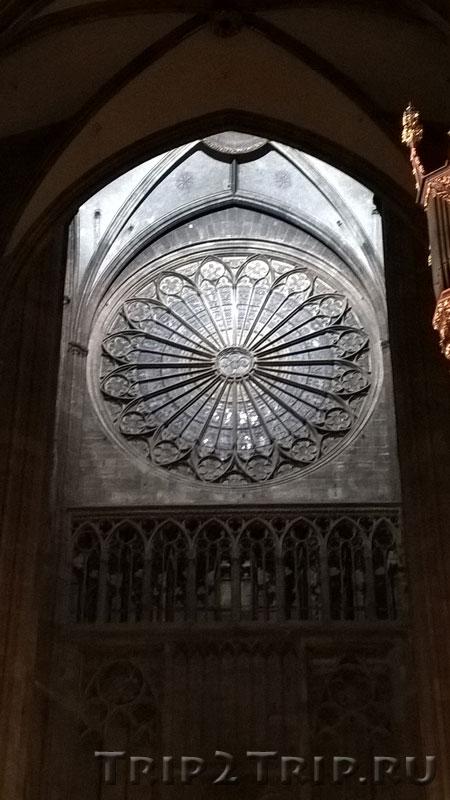 Роза, страсбургский собор