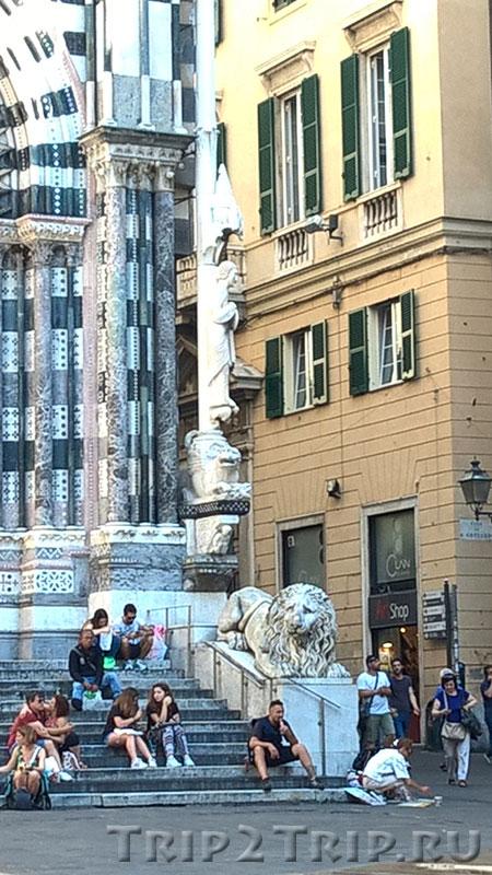 Правый лев у входа в собор Сан-Лоренцо, Генуя
