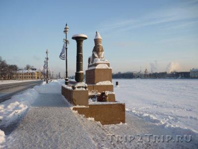Сфинкс на Университетской набережной, Санкт-Петербург