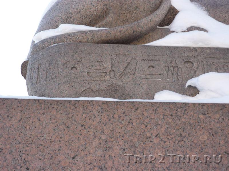 Древнеегипетские письмена на сфинксе с Университетской набережной, Санкт-Петербург
