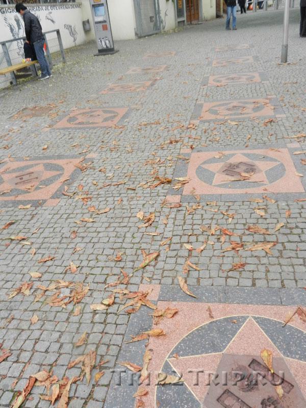 Аллея звёзд, Пражский зоопарк