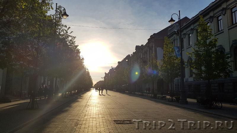 Проспект Гедимина, Вильнюс