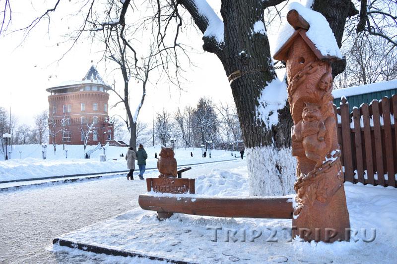 Черешчатый дуб, Георгиевская улица, Владимир