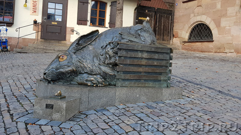 Заяц Дюрера, Нюрнберг