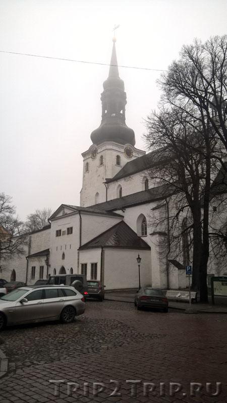 Домский собор (Тоомкирик), Таллин