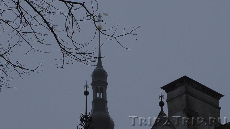 Флюгер Старый Тоомас, Таллин