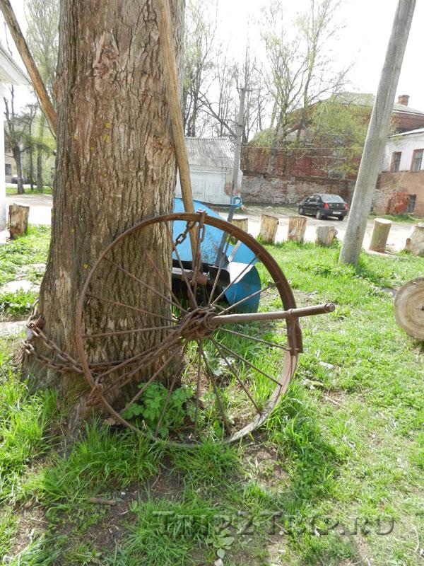 Фото тележного колеса, прикованного цепью к липе, центра Переславля-Залесского