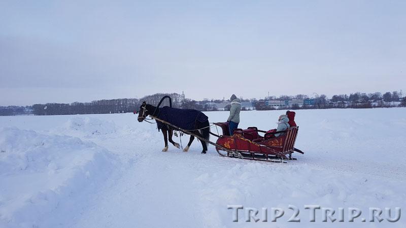 Лошадка с санями, заливной луг близ церкви Покрова на Нерли, Боголюбово