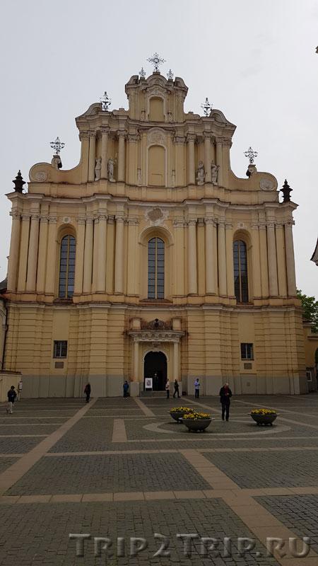 Костёл Святых Иоаннов, Виленский Университет