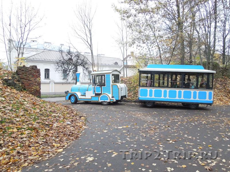 Ботанический сад, Псков