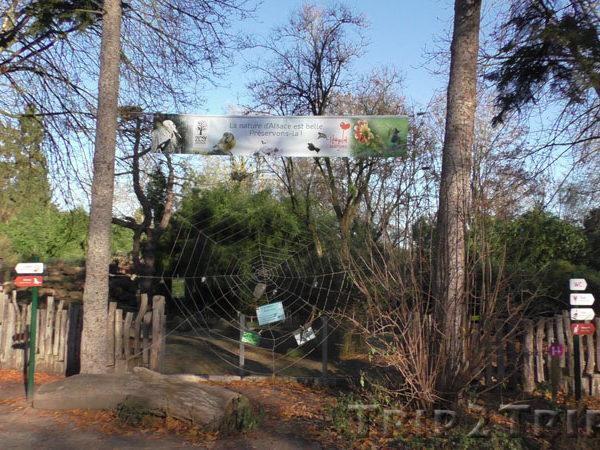 Зоопарк, Мюлуз