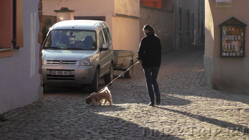 Дама с собачкой, Эгисхайм