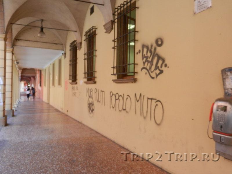 """Надпись в одном из болонских портиков """"Muri puliti, popolo Muto"""""""